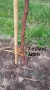 Humac agro3