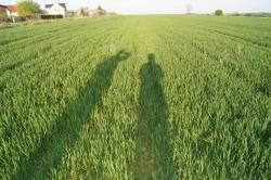 maj 2013 bez humac agro